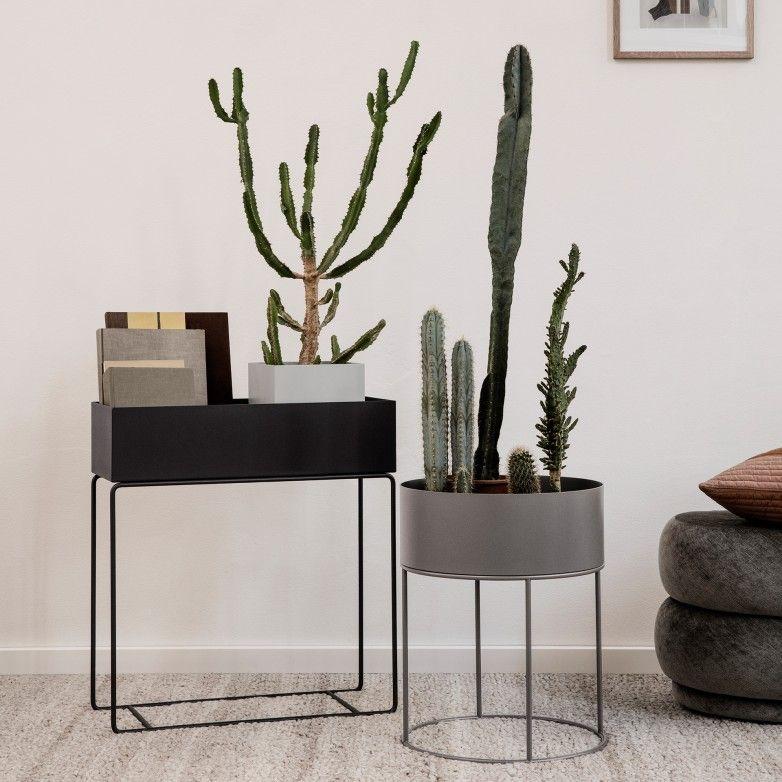 PLANTA BOX REDONDA - FERM LIVING
