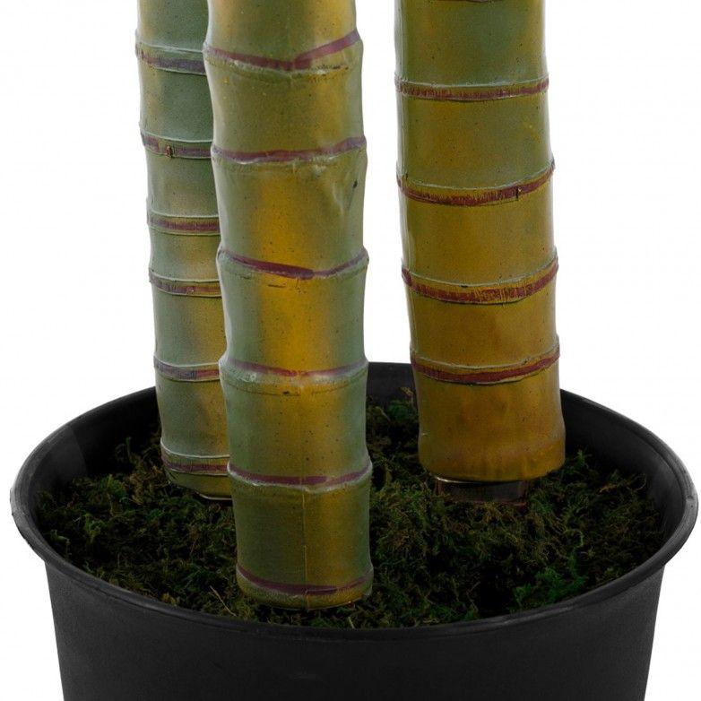 PHENIX PLANT