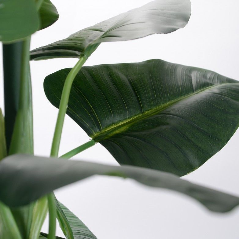 PLANTA FLORIANÓPOLIS